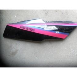 plast FZR 600